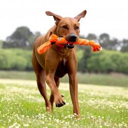 Bayer Advantix Perros hasta 4Kg.